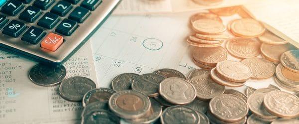 intressant fakta om skulder