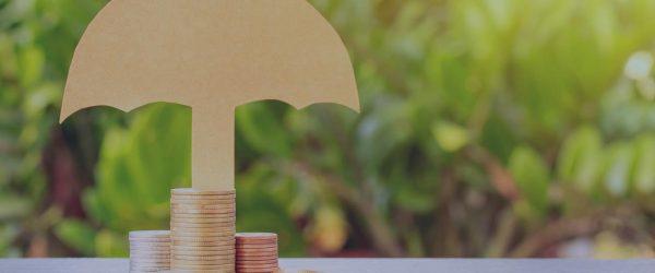 låneskydd